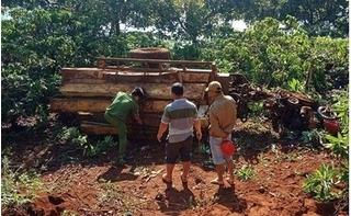 Lật xe máy cày chở gỗ lúc rạng sáng, 3 người thương vong