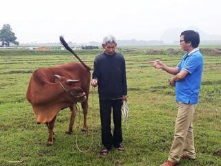 Chuyện động trời ở Thanh Hóa: Chăn thả trâu, bò phải nộp phí... cỏ