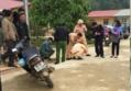 Cô giáo ân hận sau sự cố lùi xe khiến 2 học sinh thương vong ở Sơn La