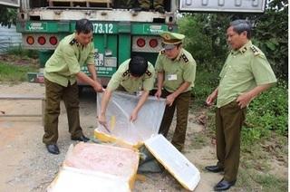 Hà Tĩnh: Bắt giữ xe vận chuyển gần 5 tấn nầm lợn bốc mùi hôi thối