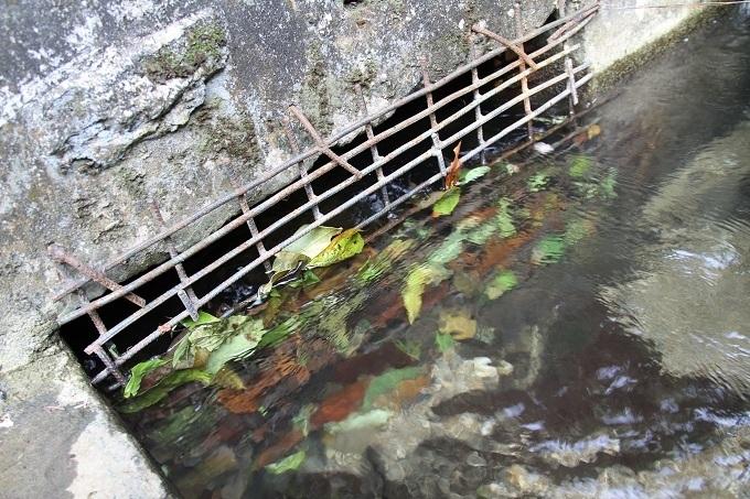 Tuyên Quang: Người dân kêu trời vì phải mua nước bẩn với giá cao3