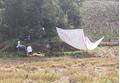 Bắt hai nghi phạm giết người rồi phi tang xác ngoài cánh đồng