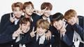 BTS hủy 'thảm đỏ' Music Bank để giữ an toàn cho fan