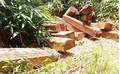 Người chở gỗ trái phép ở Kon Tum bị... gỗ đè chết
