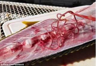 Thớ cá làm sushi có tới 8 con giun bò, người ăn vào nhiễm sán dây dài tới cả mét