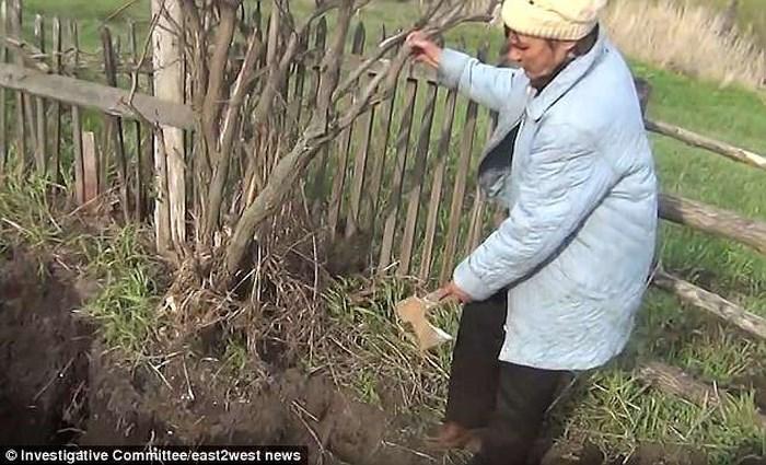 Đào thấy hộp sọ khi làm vườn, cụ ông chết lặng khi biết đó là chồng cũ của vợ