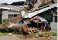Cây cổ thụ bật gốc đè 3 căn nhà ở Sài Gòn, bé gái 13 tuổi nhập viện