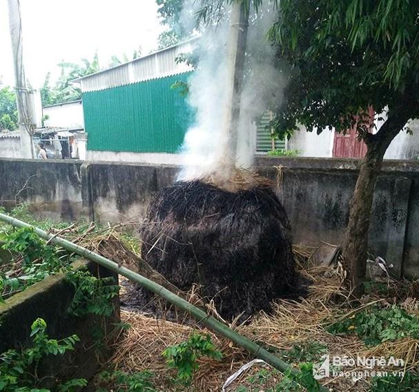 Cây rơm nhà ông Nguyễn Duy Thọ bị cháy trong đêm