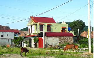 Thanh Hóa: Bí thư xã bị cấm đi khỏi nơi cư trú vì sai phạm đất đai