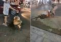 Vụ lột đồ, tưới nước mắm, muối ớt đánh ghen ở Thanh Hóa: Công an vào cuộc