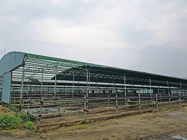 Bắt kẻ chiếm đoạt 110 tỷ tại dự án chăn nuôi bò lớn nhất Hà Tĩnh