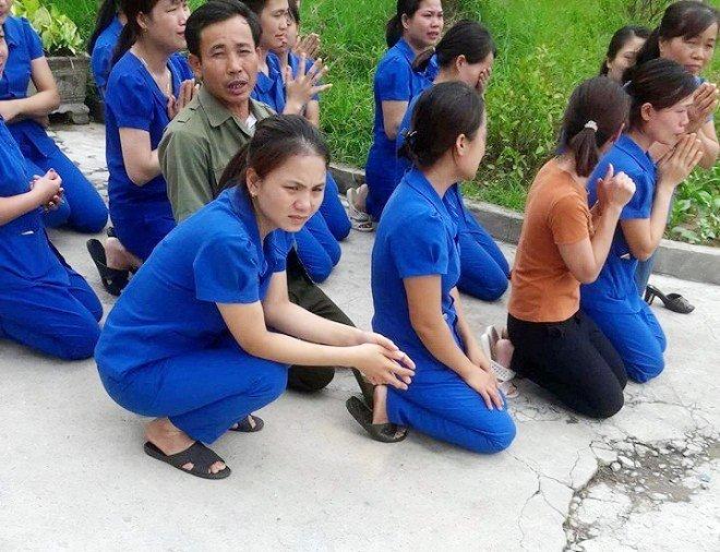 Vụ cô giáo mầm non quỳ gối xin dạy học: Nghệ An họp khẩn xử lý