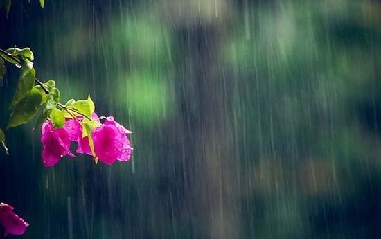 Dự báo thời tiết 16/6: Bắc Bộ mưa to, Hà Nội mưa rào vài nơi