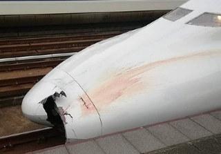 Hàng loạt mảnh thi thể người kẹt trong mũi tàu cao tốc Nhật Bản mà lái tàu không hay