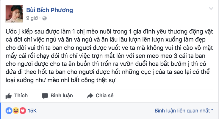 Thánh lầy, showbiz Việt