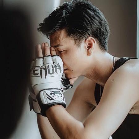 Huỳnh Anh, Hậu duệ mặt trời