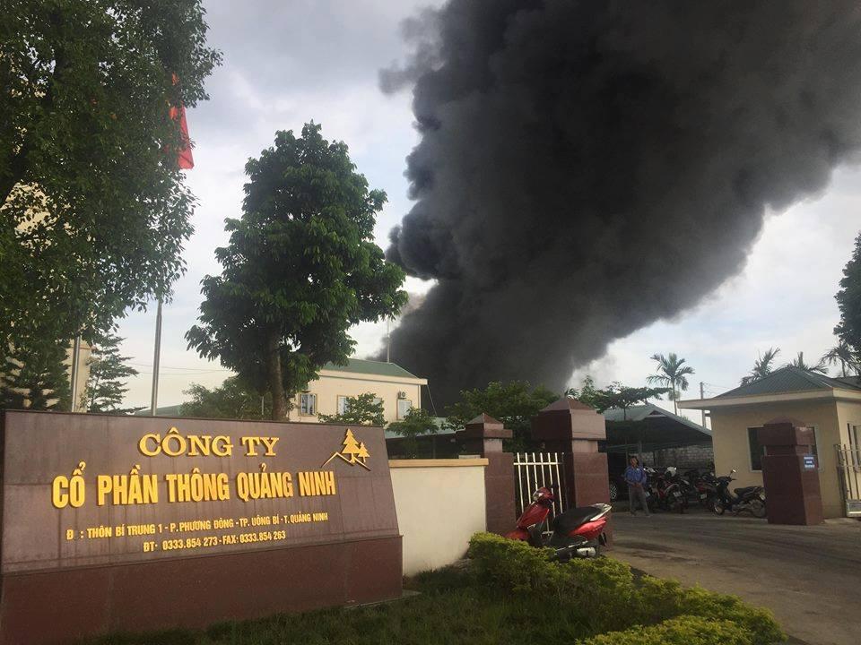 Cháy lớn tại Công ty nhựa thông ở Quảng Ninh