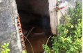Quảng Ninh: Phát hiện thi thể người đàn ông đang trong quá trình phân hủy