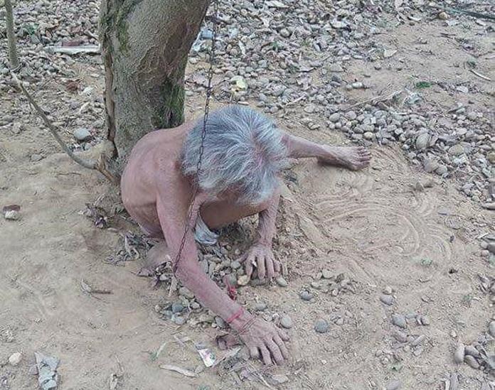 Câu chuyện đau lòng đằng sau bức hình người đàn bà chỉ mặc quần bị xích ở gốc cây
