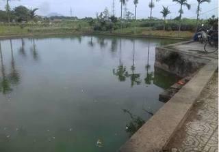 Hà Nội: Hai chị em đuối nước thương tâm dưới ao đình