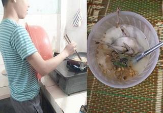 Chồng 'đảm' nấu cháo cho vợ dưỡng thai: Chim nguyên con, gạo và hành 'mỗi thứ một nơi'