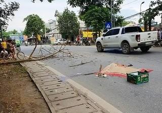 Vụ đôi nam nữ bị cành cây rơi trúng gây thương vong ở Tuyên Quang: 'Cô gái đang mang bầu tuần thứ 5'