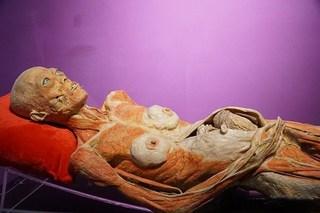 Triển lãm 'Sự bí ẩn đặc biệt của cơ thể người': Vi phạm những chuẩn mực đạo đức?