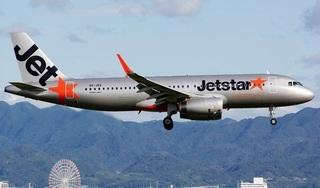 Máy bay dừng nhiều giờ ở sân bay Đồng Hới vì bị chim va phải