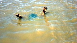 Nghệ An: Hai cháu nhỏ đuối nước khi rủ nhau xuống ao tắm