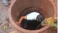 Bắc Giang: Ngạt khí sau khi đào giếng, 3 người đàn ông tử vong