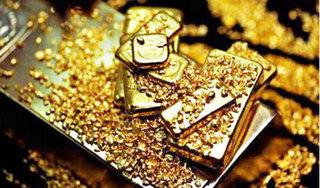 Giá vàng hôm nay 24/7: Giá vàng sụt giảm nghiêm trọng