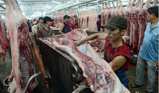 Giá heo hơi hôm nay 31/7: Giá heo hơi cao khiến giá thịt tăng mạnh