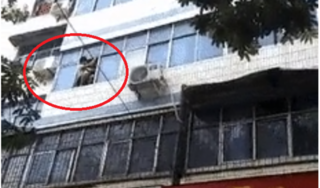 Hỏa hoạn chung cư, mẹ liều mình ném 2 con từ tầng 5 xuống đất