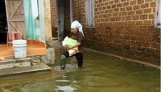 Hà Nội: Gần 800 hộ dân sống cảnh ngập lụt ở Chương Mỹ