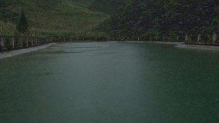 Cặp vợ chồng cứu 2 em nhỏ chới với dưới hồ, cả 4 người tử vong