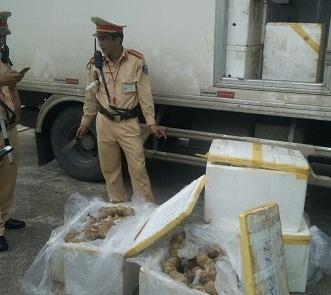 Thanh Hóa: Bắt xe vận chuyển 300 kg thịt không rõ nguồn gốc đang trong quá trình phân hủy, bốc mùi hôi thối