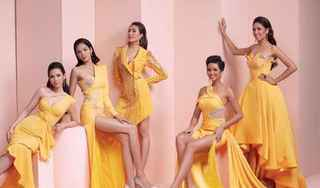 Dàn người đẹp Hoa hậu Hoàn vũ Việt Nam hội ngộ đầy ấn tượng