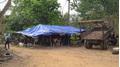 Khởi tố Hạt trưởng kiểm lâm tiếp tay cho trùm gỗ lậu Phượng 'râu'
