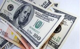 Tỷ giá ngoại tệ hôm nay 3/9: USD leo cao, Euro ổn định