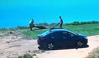 Truy tìm 2 đối tượng đi ô tô cắt trộm cỏ nhân tạo ở Sơn Trà