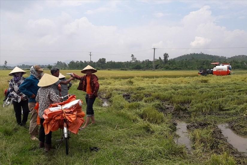Bảo kê máy gặt ở Hà Tĩnh: Chính quyền biết nhưng không thể xử lý?