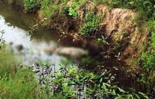 Phát hiện thi thể thanh niên xăm trổ nghi bị sát hại, vứt xác dưới kênh