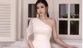 Hết nhiệm kì hoa hậu, Đỗ Mỹ Linh làm 'nàng thơ' cho Công Trí