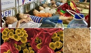 Vụ 352 học sinh cấp cứu ở Ninh Bình: Vi khuẩn tụ cầu vàng nguy hiểm như thế nào?