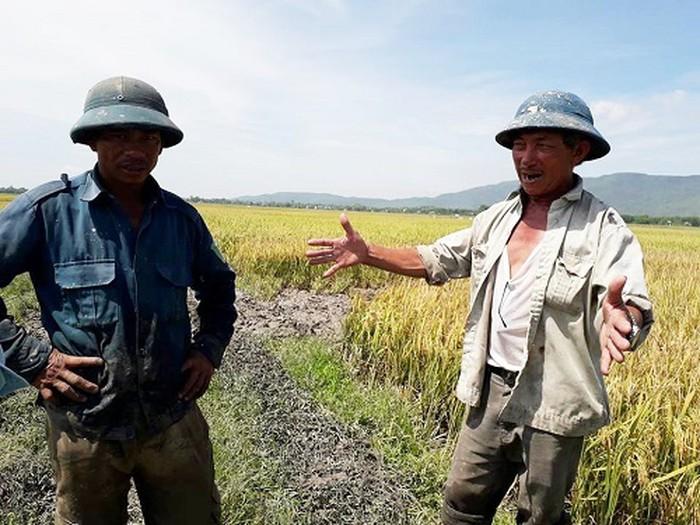 Người dân Tân Khang bức xúc bì bị bảo kê đe dọa