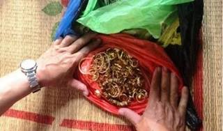 Nhà đại gia xây dựng ở Ninh Bình bị trộm đột nhập lấy mất 200 cây vàng