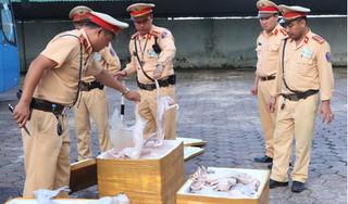 Bắt giữ 900kg thịt mèo không rõ nguồn gốc vận chuyển về Thái Bình