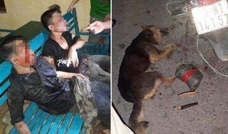 Hải Phòng: 2 thanh niên bị đánh thương vong khi trộm chó