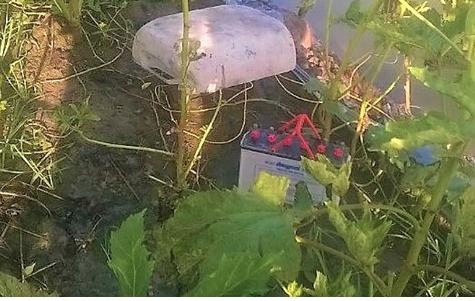 Dùng bình Ắc quy bẫy chuột, thanh niên bị điện giật tử vong