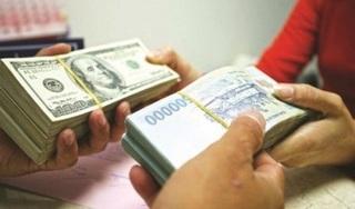 Lãnh đạo TP Cần Thơ lên tiếng vụ anh thợ điện đổi 100 USD bị phạt 90 triệu đồng